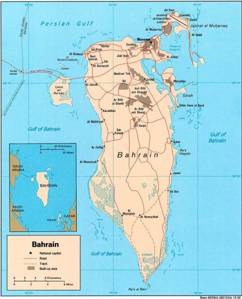 Bahrain Politics -- Shiite Sunni