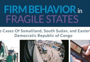 Business_in_Fragile_States