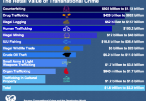 transnational organized criminal groups
